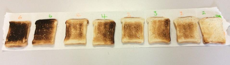 Toast Test